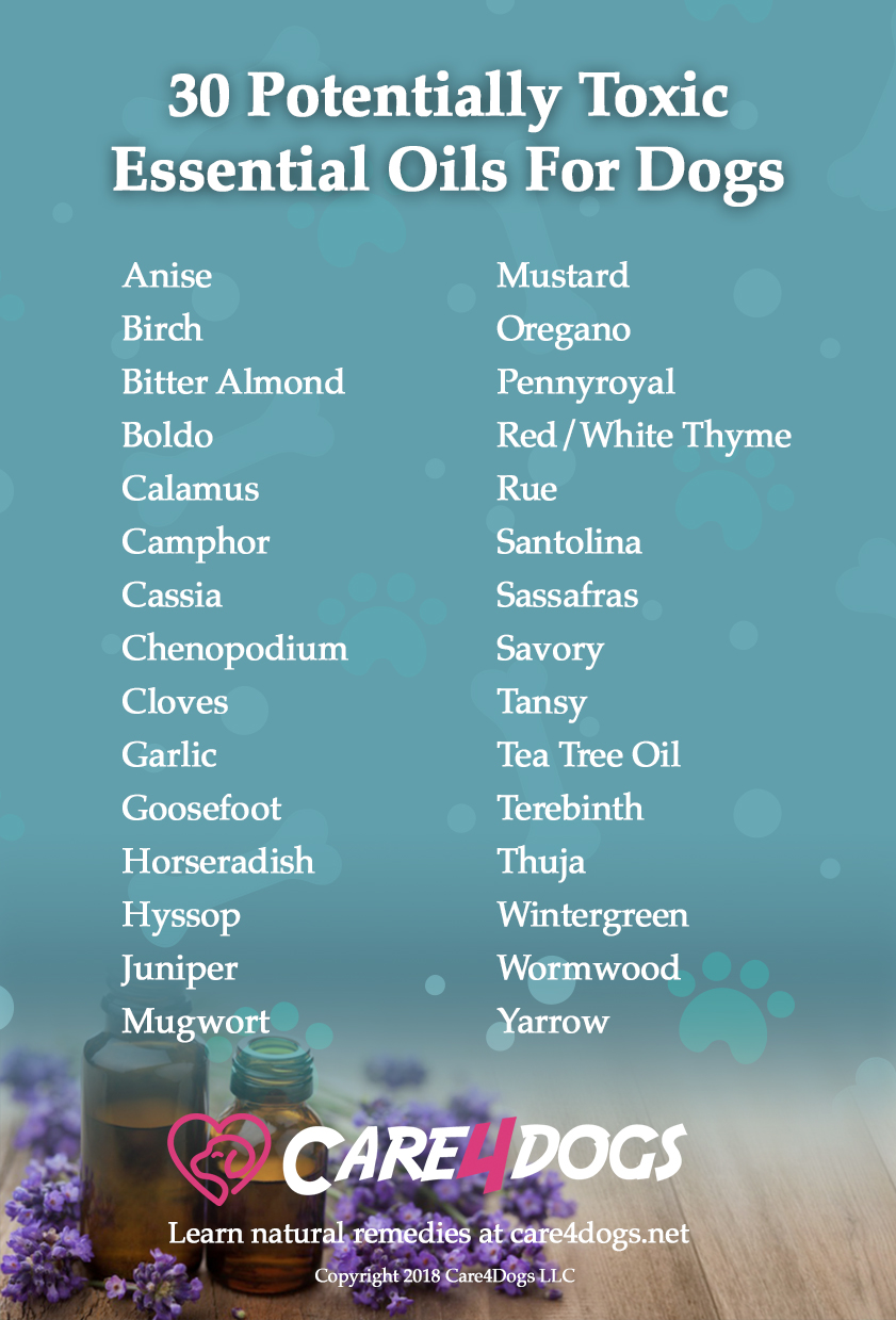 30 Potentially Toxic Essential Oils ForDogs