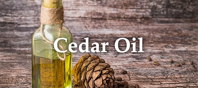 Essential Oil Headers Cedar Oil