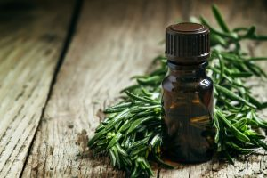 Essential Oils for Fleas and Ticks on Dogs